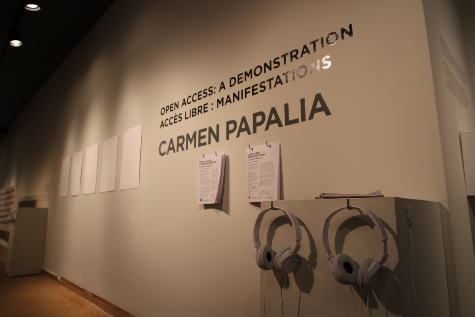 Carmen Papaia - Open Access, exhibition photograph